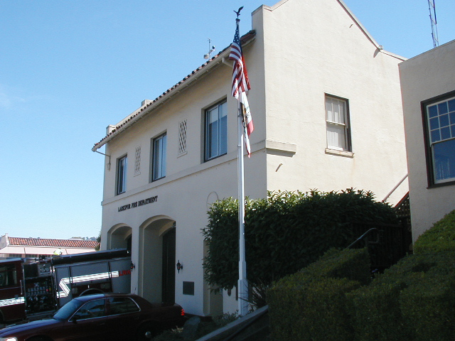 Station 15 Larkspur